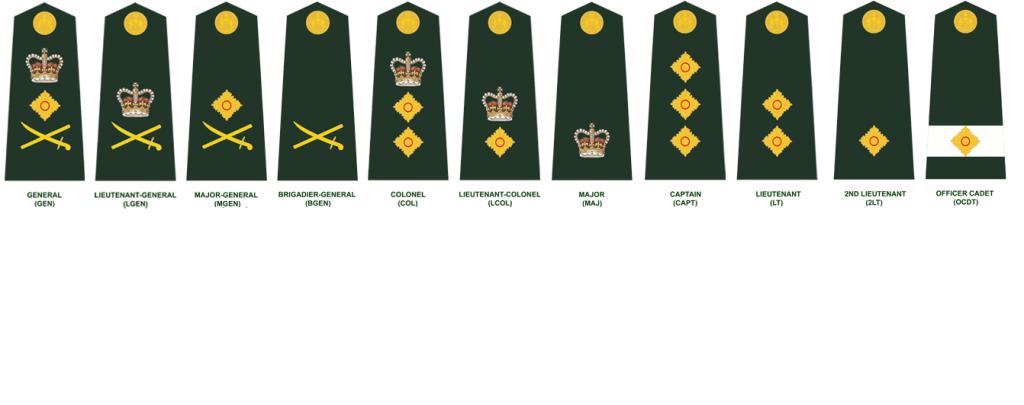 army officer insignia wwwimgkidcom the image kid has it