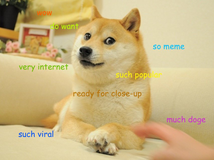 Doge meme of 2013