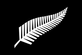 New Zealand All Black Silver Fern flag 324px
