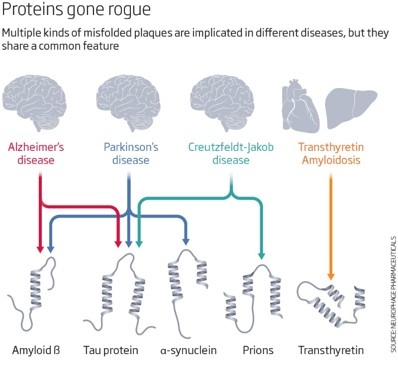 Proteins gone rogue